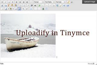 Upload image in Tinymce with Uploadify